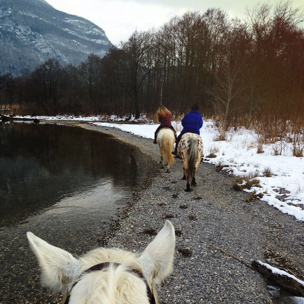 Balade à cheval au bord du lac d'annecy