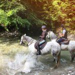 Randonnée équestre dans la rivière